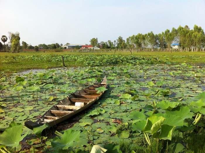 Cambodia-lake-e1459419633480