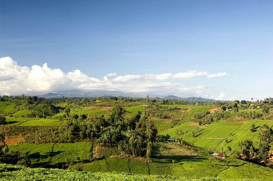 Landscape-Kenya