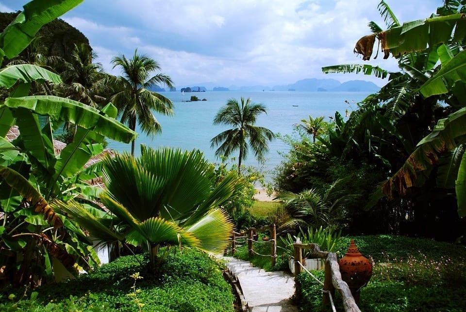 Thailand-tropic