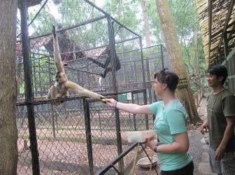 animal_rescue_center3