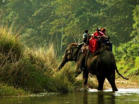 chitwan-udflugt-tur-paa-elefantryg