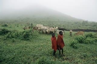 photo_sm_kenya