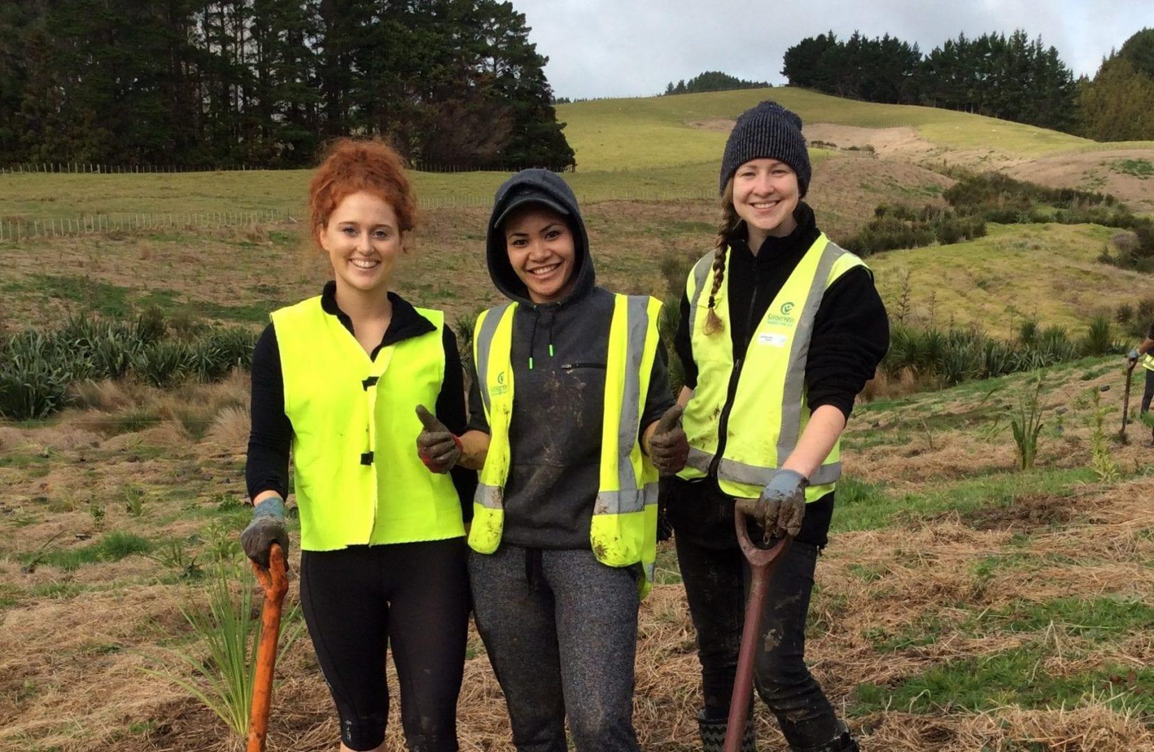 frivillige i New Zealand