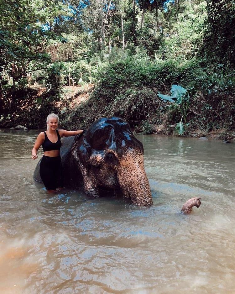 frivilligt-arbejde-elefanter-sri-lanka_1