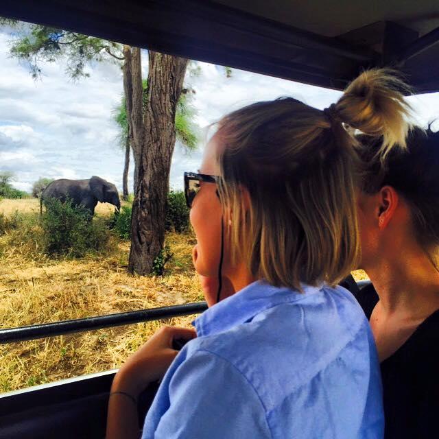 safari-Tanzania-EXIS (14)